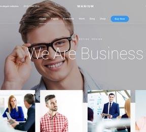 wanium_we_are_businessfix